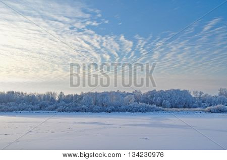 Winter water landscape - snowy winter trees along the bank of the winter frosted river in the thin cold fog at the sunset - winter picturesque landscape.