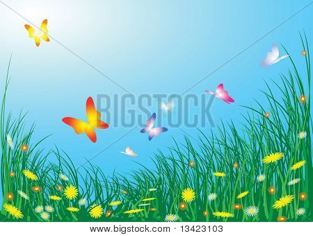 Spring meadow with flowers and butterflies