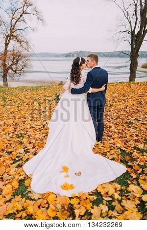 Happy young newlywed bridal couple kissing on autumn lakeshore full of orange leaves. Back view