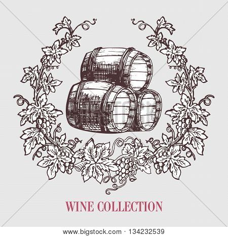 Wine and wine making. Wine barrels with grapes wreath. Wine template design. Vector illustration. Sketch style design.