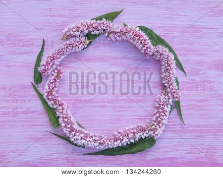 circlet of pink bistort flowers on the violet rough painted wooden background