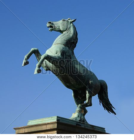 bronze statue of the Saxon Steed in Hanover, Germany