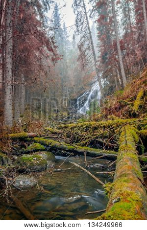 fallen trees in front of a waterfall