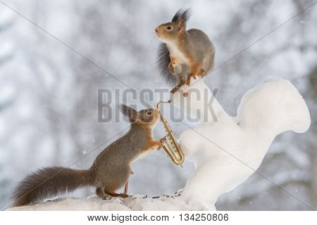 red squirrels on snow squirrel with saxophone