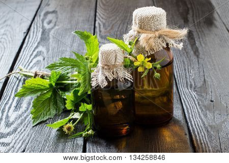 Medicinal plant Geum urbanum (wood avens herb Bennet colewort St. Benedict's herb) and pharmaceutical bottles. Used in herbal medicine cooking food for animals bee plant and insecticide