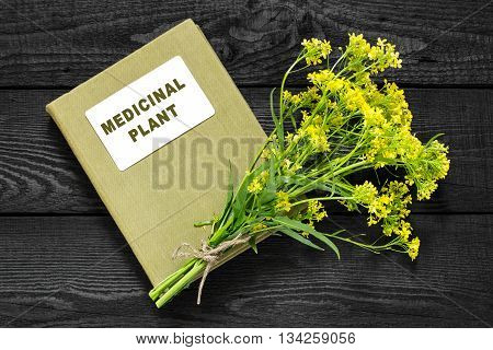 Medicinal plant Bunias orientalis (Turkish rocket hill mustard Turkish warty cabbage warty cabbage). Flowers and herbalist handbook. Used in herbal medicine cooking food for animals