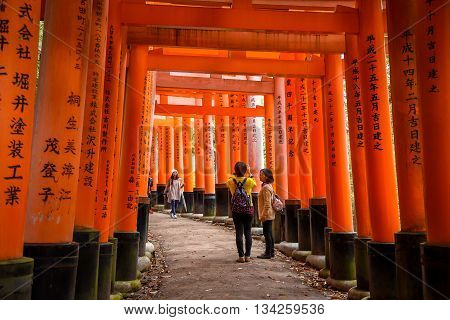 KYOTO JAPAN - NOVEMBER 18 2015 : Tourist walk through orange Torii gates in Fushimi Inari shrine one of famous landmarks in Kyoto Japan