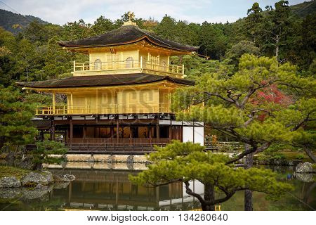 Kinkakuji Temple (The Golden Pavilion) and beautiful garden reflected on water one of famous landmarks in Kyoto Japan