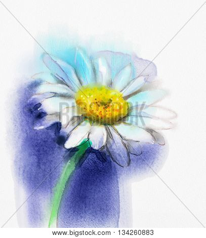 Abstract watercolor painting white gerbera daisy flower on blue color background. Hand painted white floral water color. Sketch flower paint in pastel colors. Painted flower sketch
