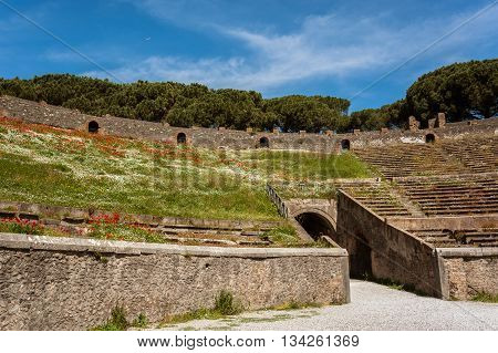 Ancient Arena of the Amphitheatre in Pompeii, Italy. View of the ruins of Ancient Roman city. The ruins overgrown with grass and flowers.