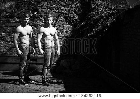 Twin Muscular Bodybuilders