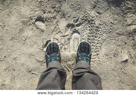Male Feet In Sporty Shoes Stand On Dirty Ground
