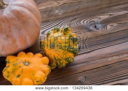 fresh vegetable orange squash on wooden table