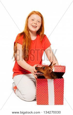 Little girl with her new pet dog in birthday present portrait sitting isolated on white