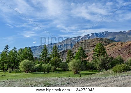 Scenic summer view with mountains of red rock with sparse vegetation and trees on the background of blue sky and clouds