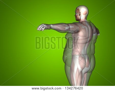 Concept, conceptual 3D illustration fat overweight vs slim fit diet with muscles young man green background, metaphor weight loss, body, fitness, fatness, obesity, health, healthy, male, dieting shape