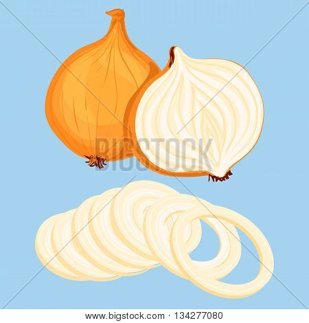 Whole bulb onion half and onion rings isolated on blue background. Vector illustration.