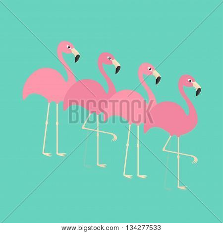 Pink flamingo set. Exotic tropical bird. Zoo animal collection. Cute cartoon character. Decoration element. Flat design. Blue background. Isolated. Vector illustration