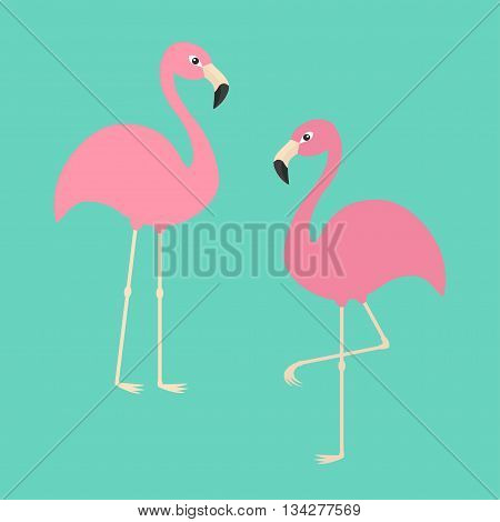 Two pink flamingo set. Exotic tropical bird. Zoo animal collection. Cute cartoon character. Decoration element. Flat design. Blue background. Isolated. Vector illustration