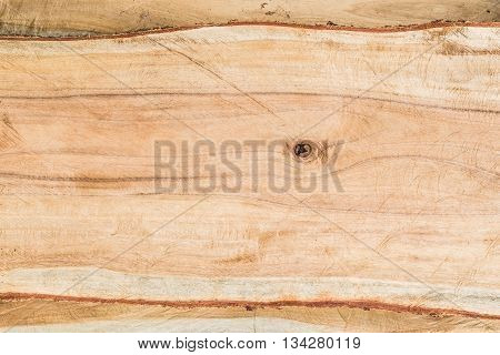 Close-up Real wood texture background of cut tree trunk, Blank  wooden with copy space tree-rings