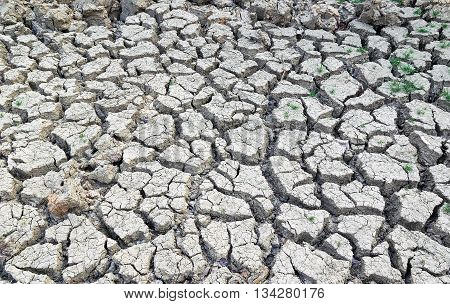 Cracked earth background textureCracked soil because water wells dry up.