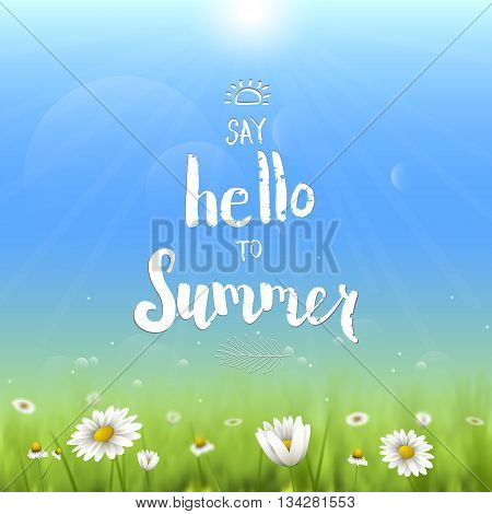 Floral summer background with chamomiles. Say hello to summer handwritten vector illustration.