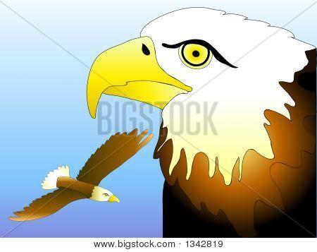 Eagle Art 1
