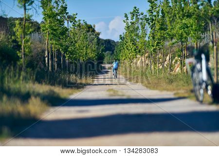 Woman Cycling On Path Of Old Train Track. Bicis Verdes. Mallorca. Spain.