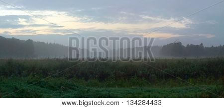 Panoramic View Of Swamp In Dusk Near Greifswald, Germany