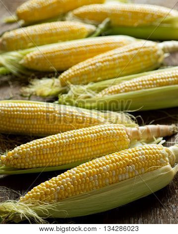 Fresh local organic corn on the cob against a rustic harvest table background.