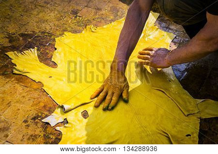 Man working in a tannery in the city of Fez in Morocco.