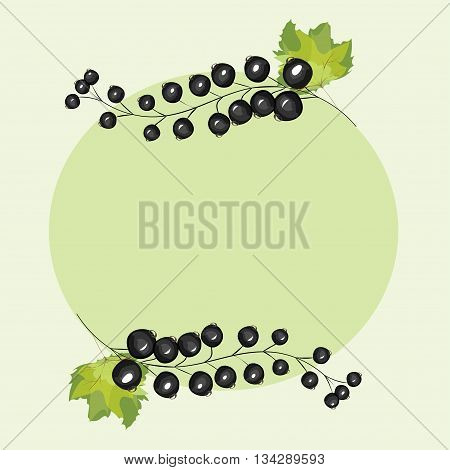 Vector hand drawn berries currants label. Black currant berries circle menu recipe design.