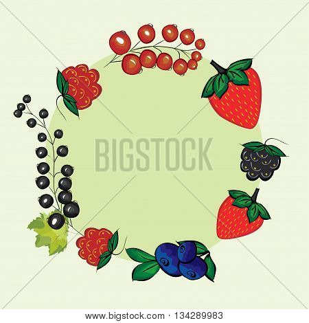 Vector set of hand drawn berries for the label. Currants, raspberries, strawberries, blueberries, blackberries for menu and recipe design.