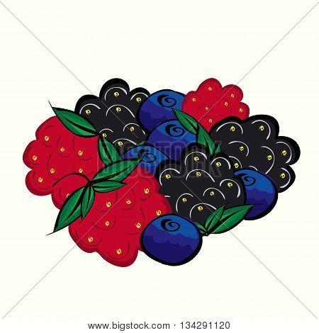 Ripe forest berries raspberries blueberries blackberries. Juicy delicious dessert tea.