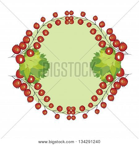 Vector hand drawn berries currants label. Red currant berries circle menu recipe design.