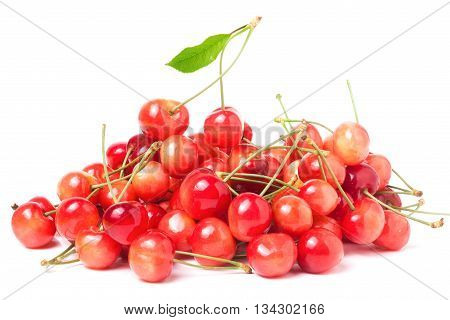 a lot of pink cherries isolated on white background.