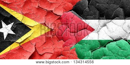 east timor flag with Palestine flag on a grunge cracked wall