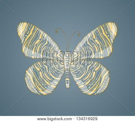 Beautiful abstract golden butterfly. Illustration 10 version