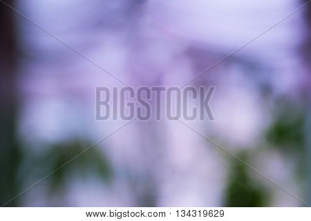 Sunny abstract nature background, bokeh