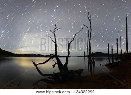 stars night sky,night sky with many stars
