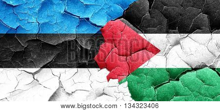 estonia flag with Palestine flag on a grunge cracked wall