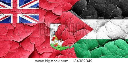 bermuda flag with Palestine flag on a grunge cracked wall