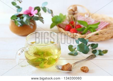 Summer composition with herbal tea of mint and eucalyptus