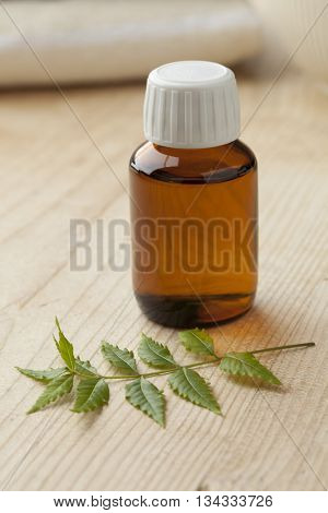 Bottle with Neem oil and green twig