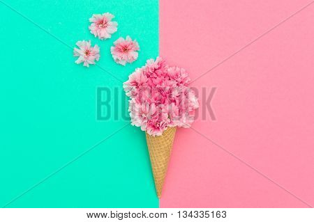 Pink cherry flowers in ice cream waffle cone on colorful background. Minimal concept