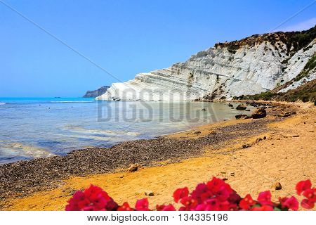 Scala dei Turchi the white cliffs of Sicily with pink flowers in foreground