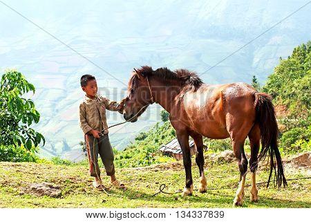 SAPA, VIETNAM, February 19, 2016 boys, ethnic Hmong, high mountains, Sapa, Vietnam. horse breeding