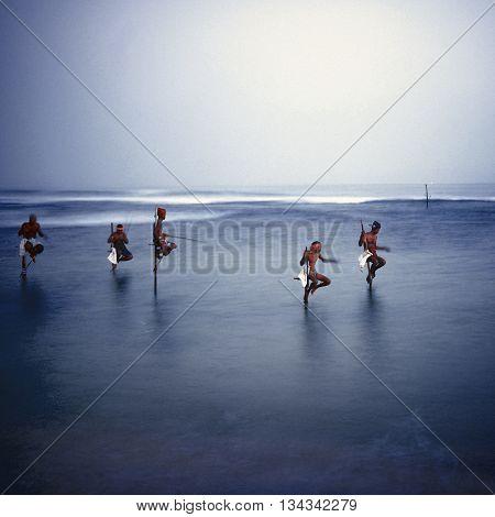 Traditional Stilt Fishermen in Sri Lanka Concept
