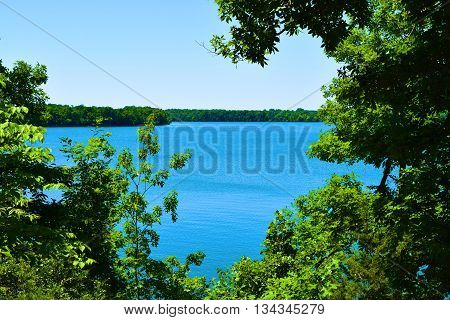 Lush green deciduous forest surrounding Tims Ford Lake, TN