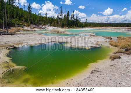 Crackling Lake At Norris Geyser Basin At Yellowstone National Park, Wyoming,  Usa